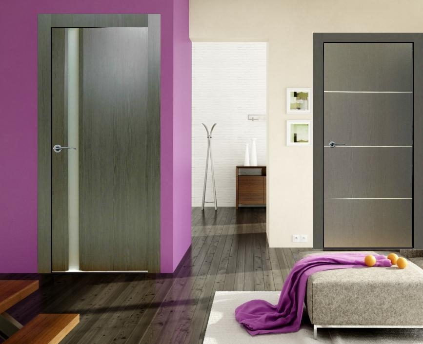 Valencia Graphite Finish Modern Interior Door Wfrosted Glass